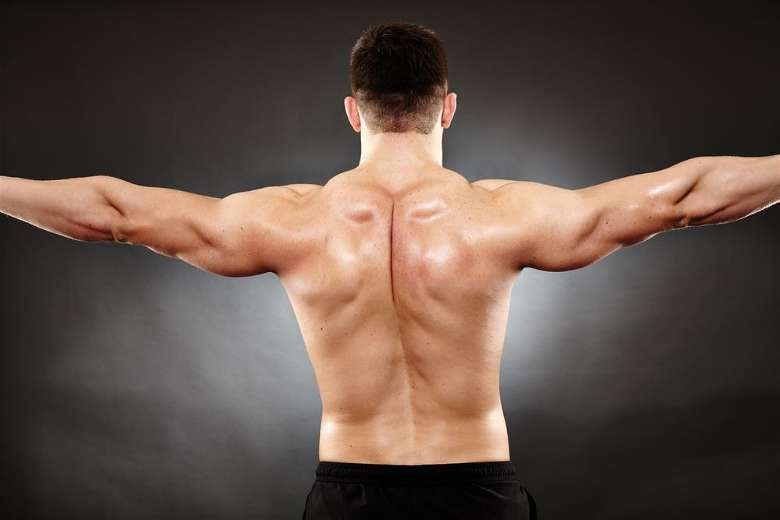 Tips to follow for effective deltoid exercises
