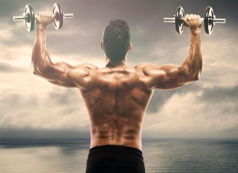 The best back workouts for stronger muscles