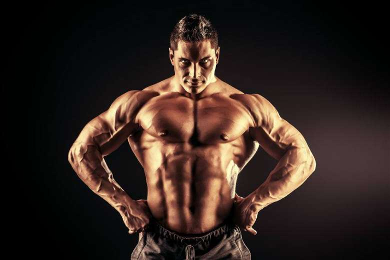How anabolic steroids work in your body