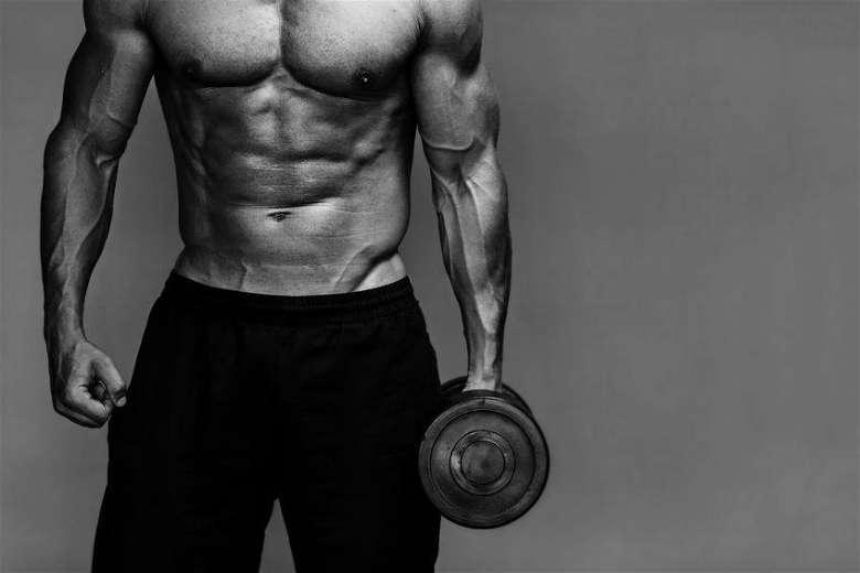 Probiotics and bodybuilding